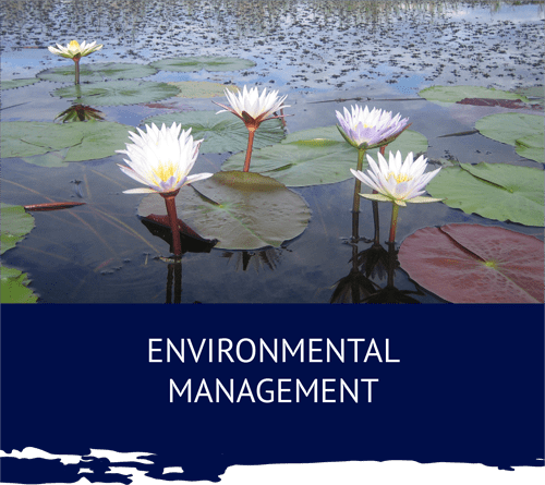 Umhlaba Environmental Consulting management lilly pads min