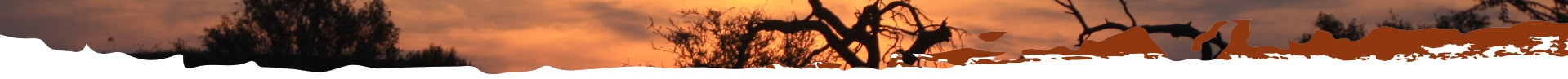 Umhlaba Environmental Consulting sunset african bush